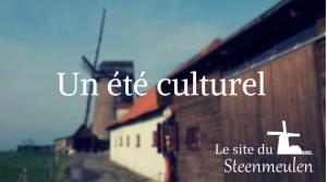 Visite de la maison de Michel et Clara offerte pour toute visite complète du site @ Le Steenmeulen