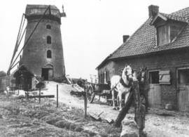steenmeulen-date-construction-1964-demey